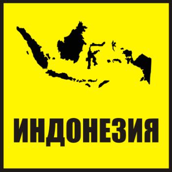 Товары из Индонезии