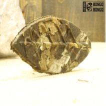 Белый чай  «Высокогорное древнее дерево»   1 шт. (7-8гр)